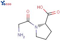 甘油-L-脯氨酸
