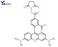 5-羧基四甲基罗丹明琥珀酰亚胺酯